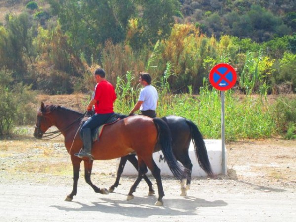 Things to do in marbella with kids - Marbella family fun ...