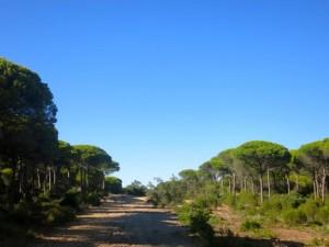 Family Holidays in Cadiz