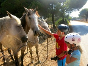 family holidays in cadiz