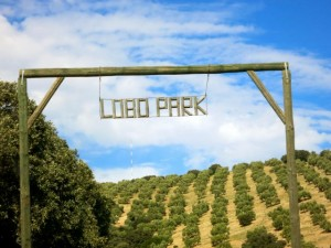 lobo park