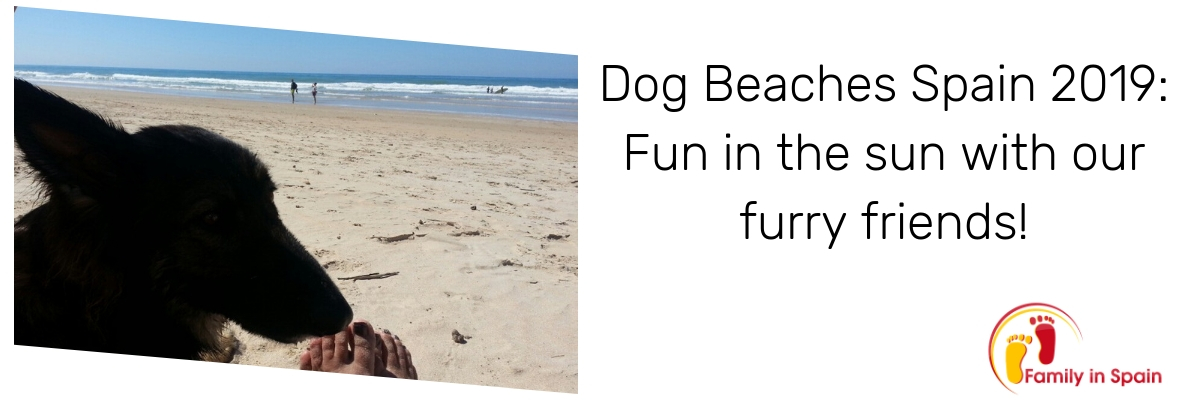 dog beaches spain 2019
