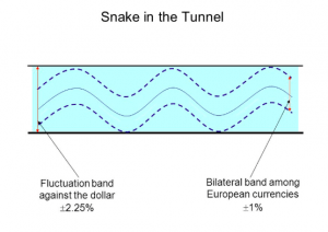 snake in the tunnel theory